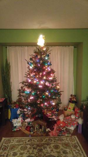 Our gorgeous Christmas tree. :D